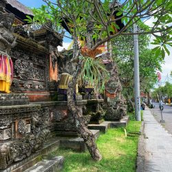 Home/Sick: Ill and Alone in Southeast Asia