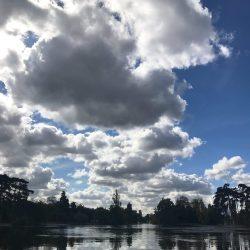 Quiet is the New Loud: Calm in the Bois de Boulogne