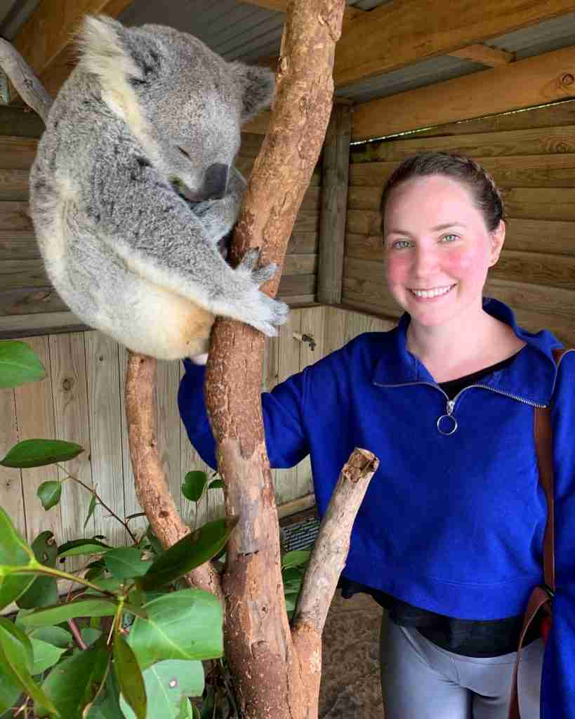 Woman traveling alone petting a koala in Sydney Australia