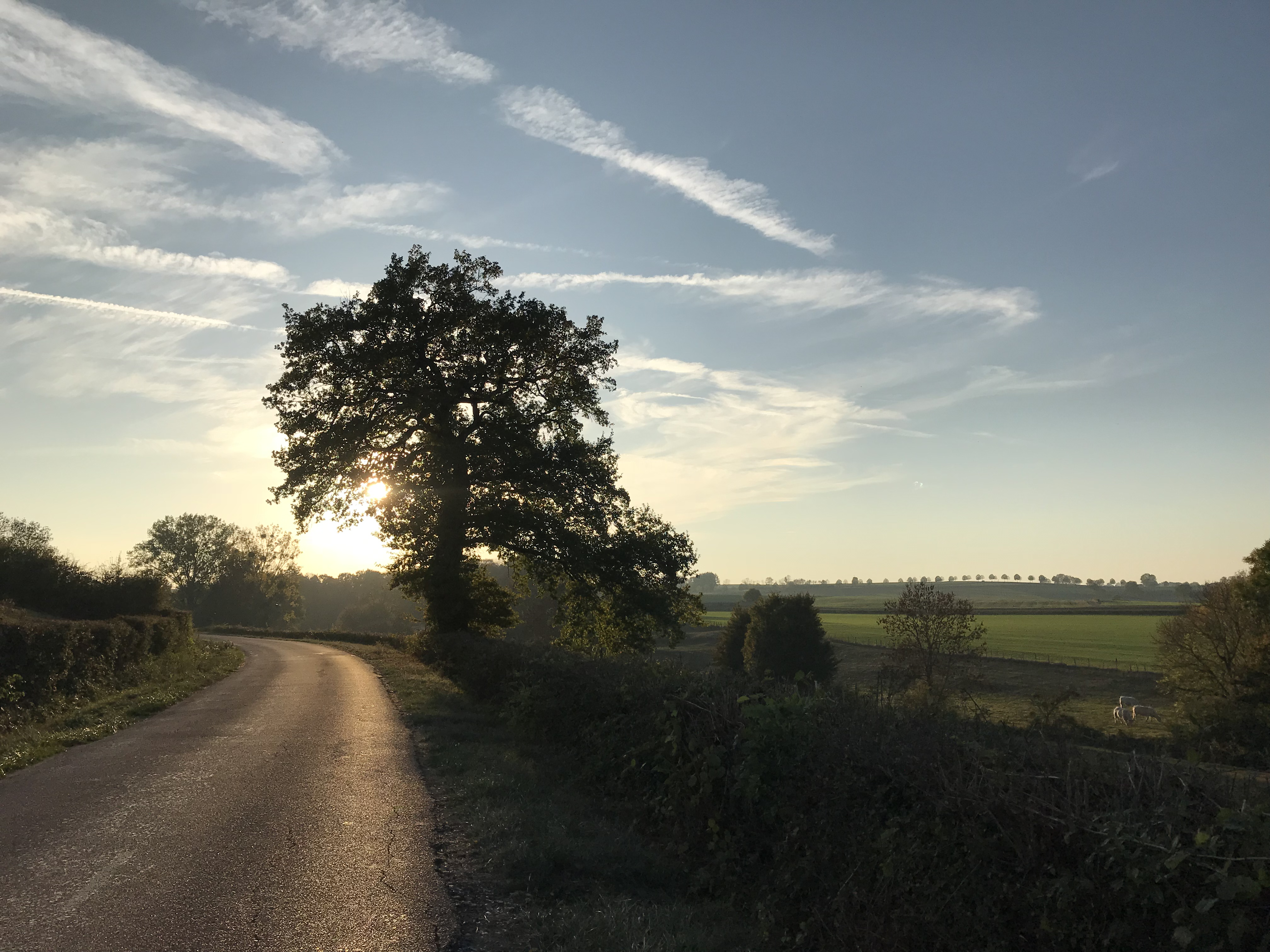 Dusk on a country road in the heart of Burgundy region of France