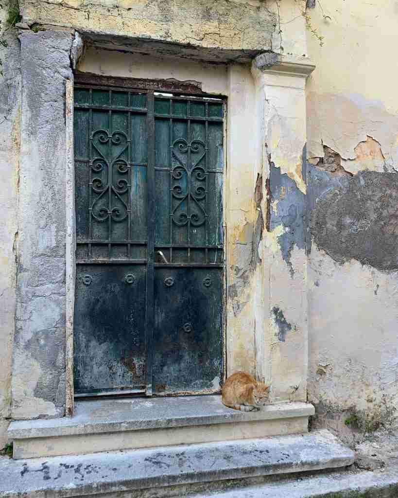 A stray cat in front of a crumbling Neoclassical mansion in Athens Greece