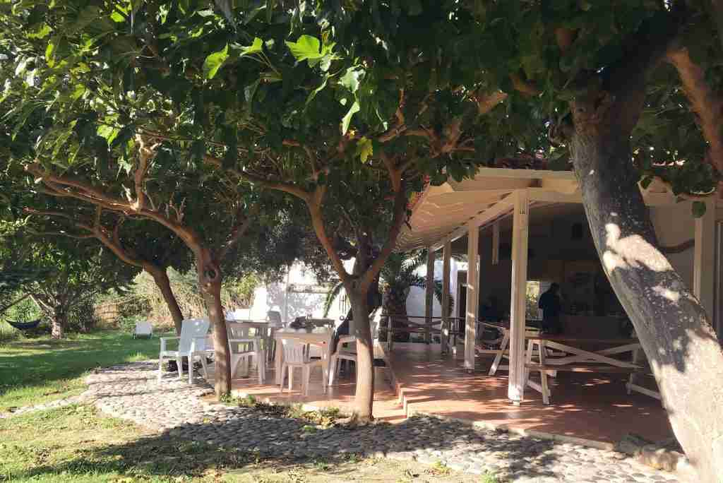 the shady yard of the Youth Hostel Plakias in southern Crete, Greece