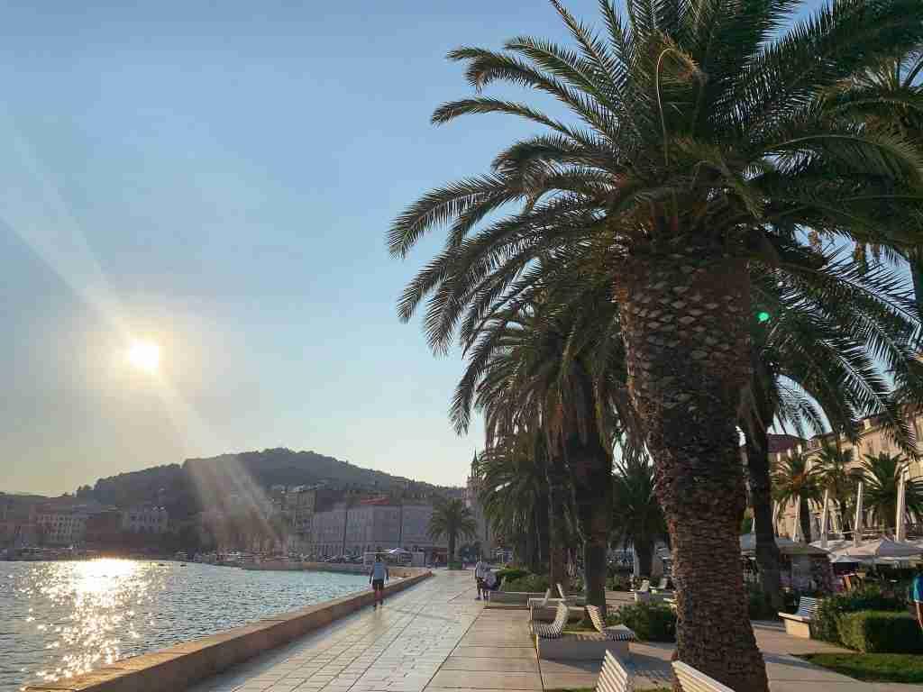 Sun over the Riva promenade in Split, Croatia with palm trees and the sea.
